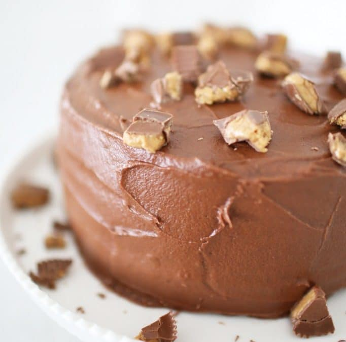 Melt-in-Your-Mouth Milk Chocolate Peanut Butter Cup Cake