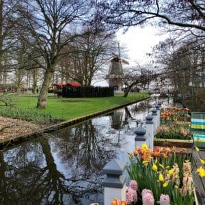 Visiting Keukenhof Gardens on a Viking River Cruise