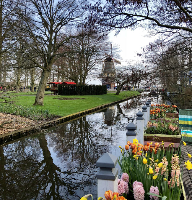 Visiting Keukenhof Gardens on a Viking River Cruise