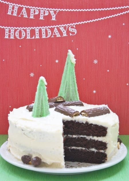 Christmas Tree Wilderness Cake