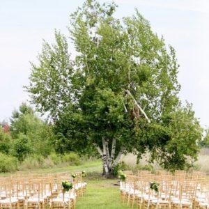 Farm Meets Woodland Wedding