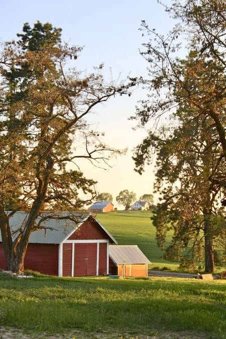 How to Find the Perfect Barn Red Paint Color